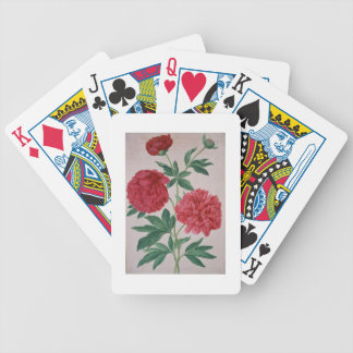 Peonies, plate 46 from the Nassau Florilegium (w/c Playing Cards