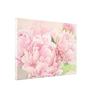 Peonies rosados lona estirada galerías