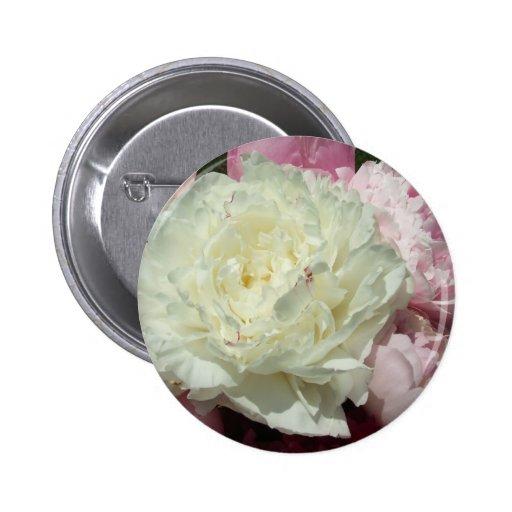 Peonies rosados/Peony rosado Pin Redondo 5 Cm