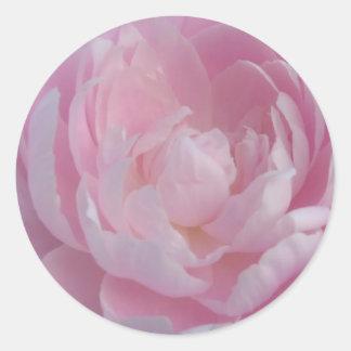 Peonies rosas claros de los pegatinas del boda del etiquetas redondas