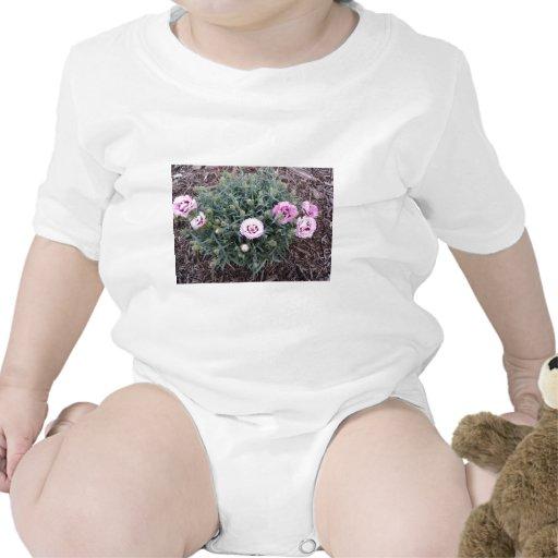 Peonies Trajes De Bebé