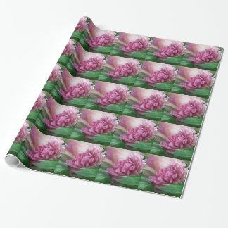 Peony - 50 sombras de papel de regalo rosado del