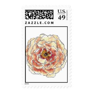 Peony (Amber) Stamp
