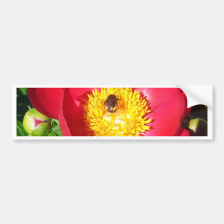 Peony and bumblebee bumper sticker