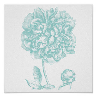 Peony Blue Green Poster