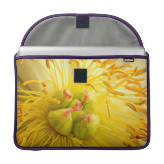 Peony Flower Macro MacBook Pro Sleeve