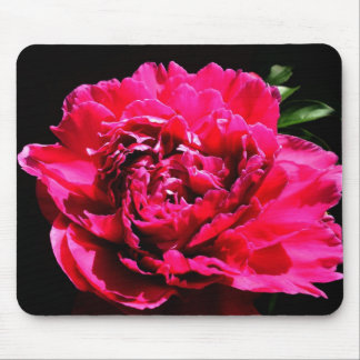 Peony Flower  Mouse pad