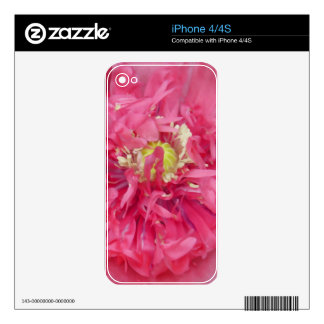 Peony flower petals decals for the iPhone 4