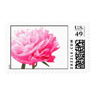 Peony flower postage