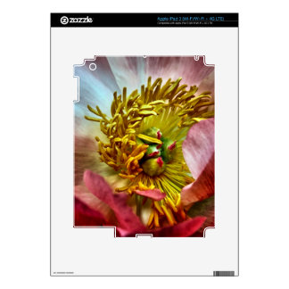 Peony Flower Skin For iPad 3