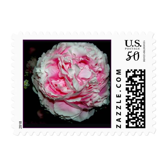 Peony Flower Stamps