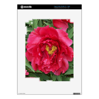 Peony Heart Skin Skins For The iPad 2
