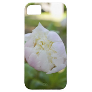 Peony iPhone Case iPhone 5 Cover