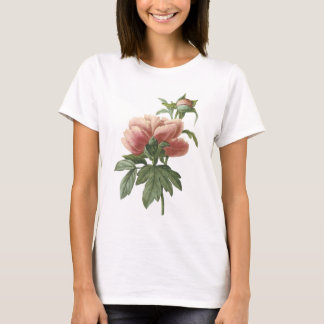 peony (Paeonia sp.) by Redouté T-Shirt