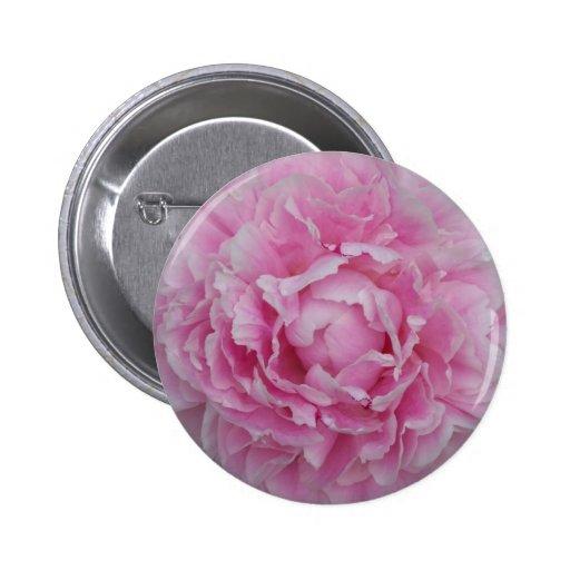 Peony rosa claro pin