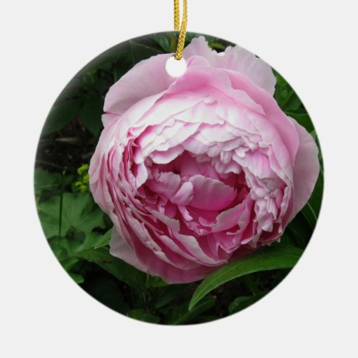 Peony rosado doble - fotografía adorno navideño redondo de cerámica