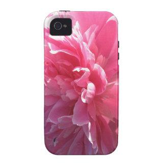 Peony rosado iPhone 4 funda
