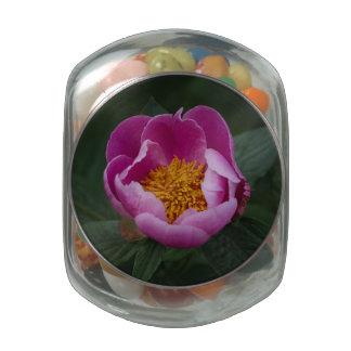 Peony rosado grande jarrones de cristal