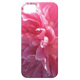 Peony rosado iPhone 5 fundas