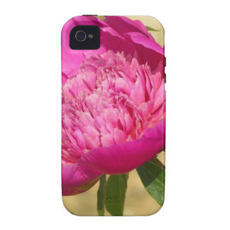 Peony rosado oscuro iPhone 4/4S carcasa