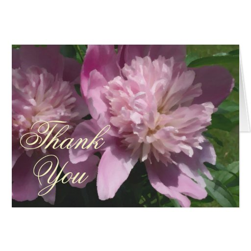 Peony Thank You Note Card