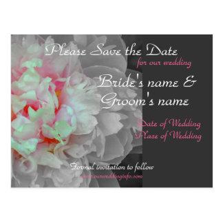 Peony Wedding Postcard