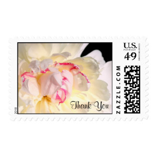 Peony with Red Thank You Postage