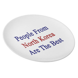 People From North Korea Are The Best Party Plates