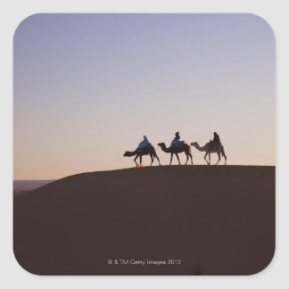 People riding camels, Morocco Square Sticker