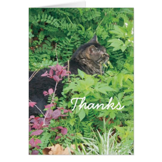 Pepe the cat in the garden card