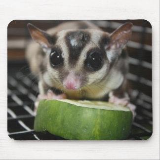 Pepino del planeador del azúcar alfombrilla de ratones