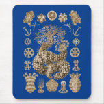 Pepinos de mar alfombrilla de ratón