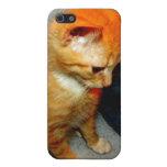 Pepita de oro iPhone 5 carcasas