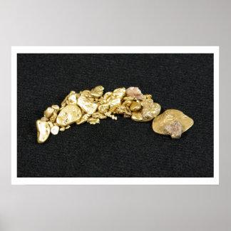 Pepita de oro poster