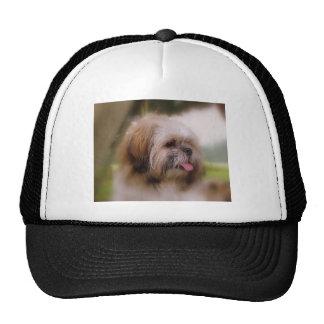 Pepper crop trucker hat