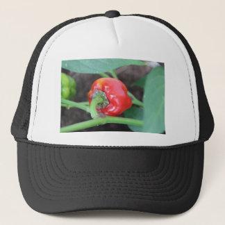 Pepper Garden Mix Trucker Hat