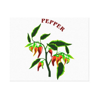 Pepper plant graphic with word pepper canvas print