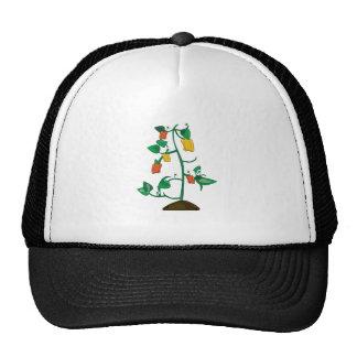 Pepper Plant Trucker Hat
