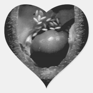 Pepper reproduction heart sticker
