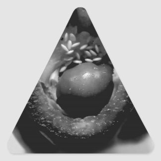 Pepper reproduction triangle sticker