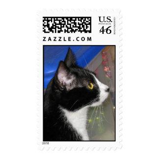 Pepper Stands Alert Stamp