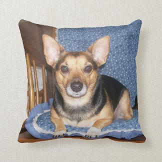 Pepper the Dog Pillow