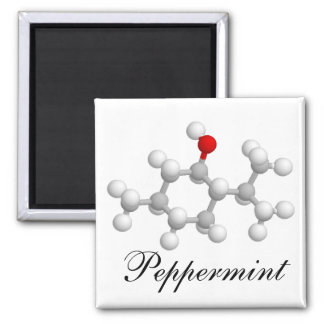 Peppermint 2 Inch Square Magnet