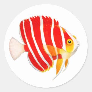Peppermint Angelfish Sticker