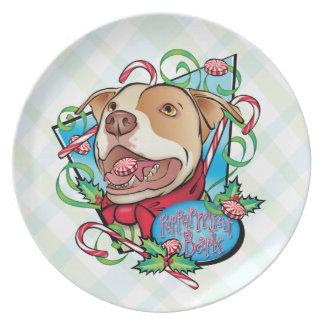Peppermint Bark Plates