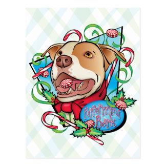 Peppermint Bark Postcard