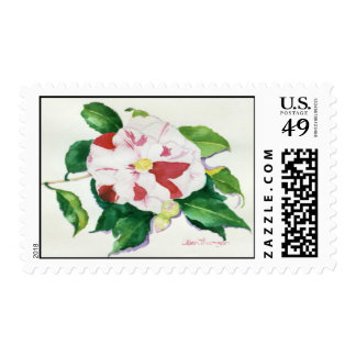 Peppermint Camellia Postage