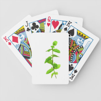 Peppermint Bicycle Card Decks