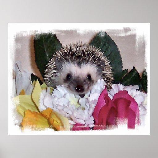 Pepperpot the Hedgehog Print