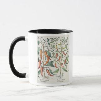 Peppers: 1.Piper Indicum maximum longum; 2.Piper I Mug